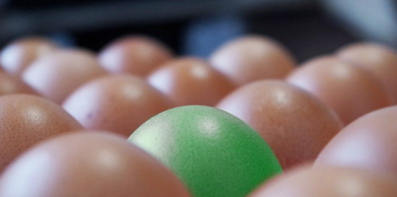 Ahora los huevos vendrán con sabor a jamón y queso
