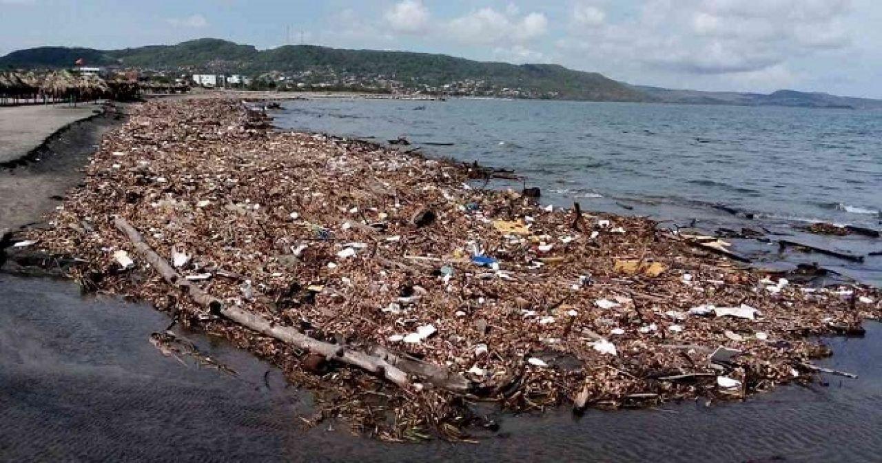 Y la conciencia ambiental, ¿a dónde fue a parar?