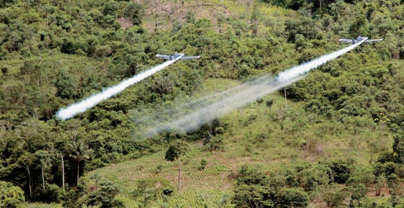 Ante posible regreso de las aspersiones aéreas, campesinos salen a protestar