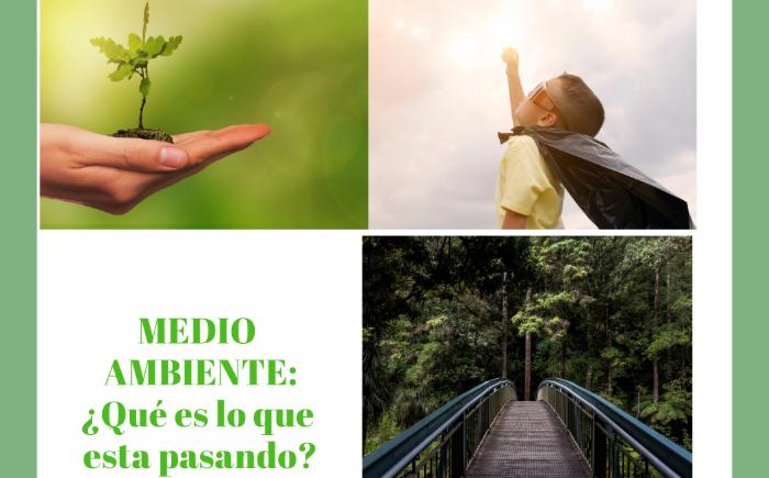 Denuncias Sociales: ¿Qué está pasando con el medio ambiente del país?