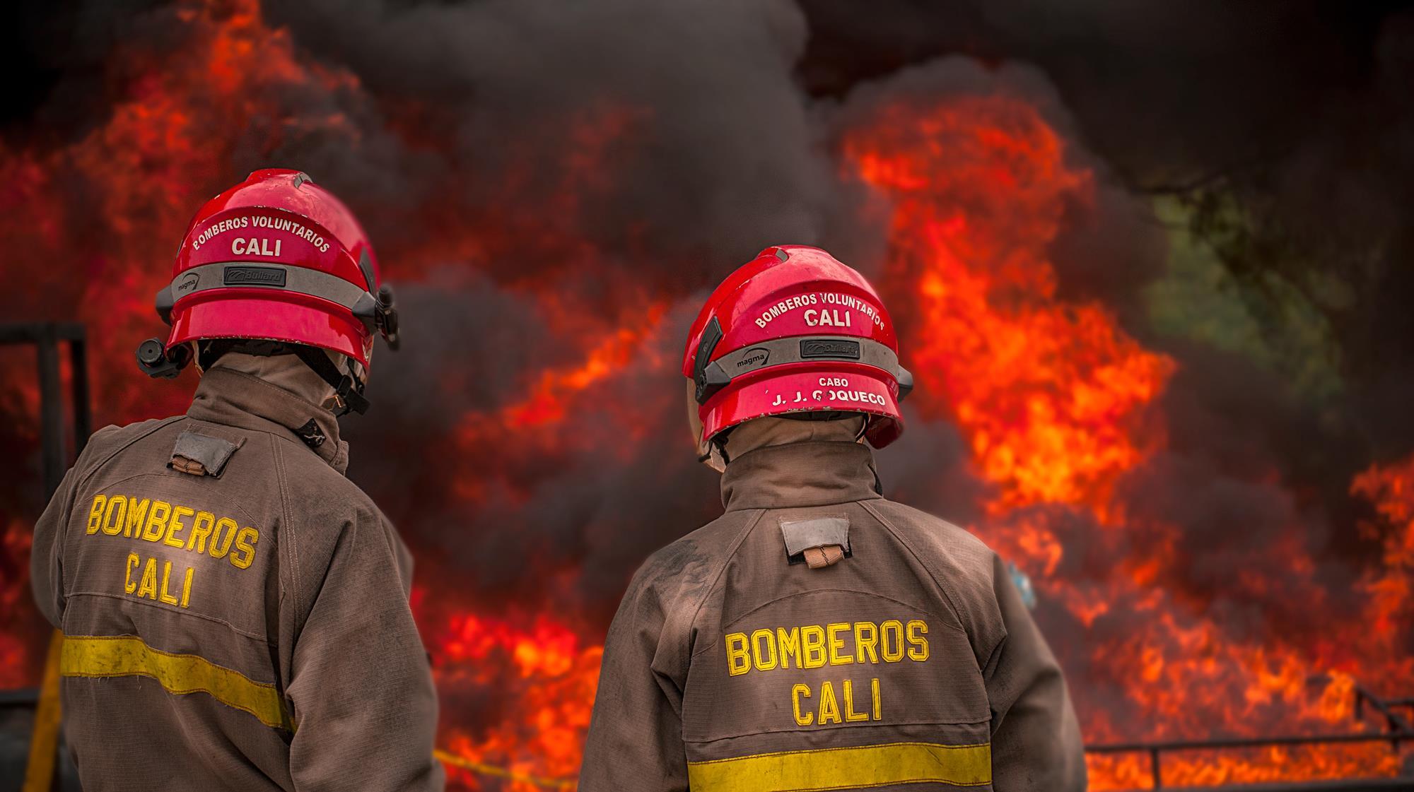Donación de árboles para recuperar zonas de Cali y Yumbo afectadas por incendios forestales