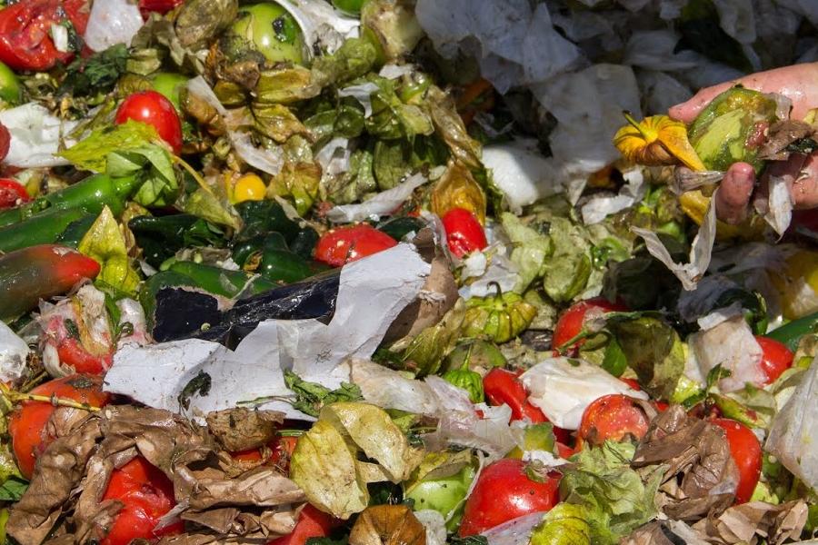 Un tema siempre vigente: desperdicio de alimentos