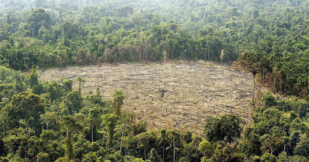 Inician audiencias para que entidades rindan cuentas sobre el Amazonas