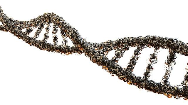Por primera vez fueron descritas alteraciones genéticas causadas por quimioterapias