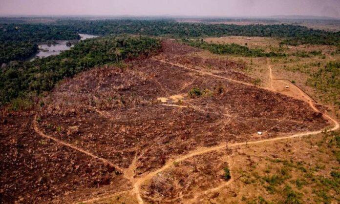 Foto recuperada de: Noticias de la Tierra