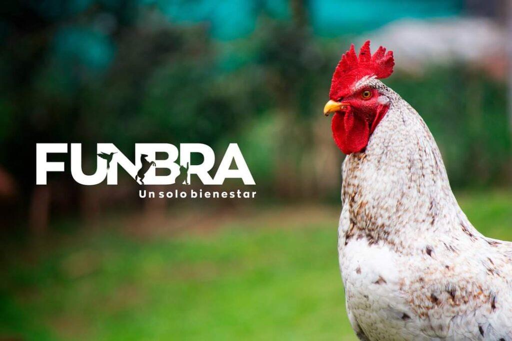Con el tiempo, la relación entre animales y humanos ha llegado a ser tan fuerte que se ha llegado a hablar de crear una regulación para las Familias Multiespecie en Colombia.