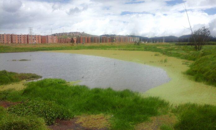 Los Humedales hacen parte del ecosistema en Ciudad Verde. Foto: Leydi Katerine Fernández Fernández