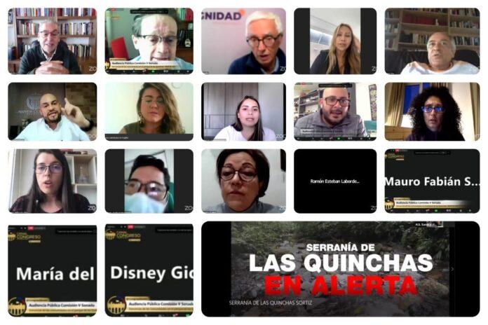 Las Quinchas